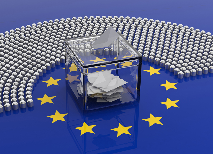 After the European Elections: the Big Picture